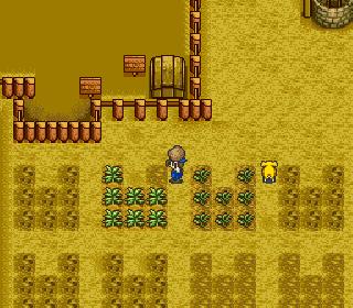 Screenshot Thumbnail / Media File 1 for Harvest Moon (USA)