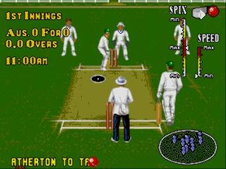 Screenshot Thumbnail / Media File 1 for Brian Lara Cricket (Europe) (March 1995)