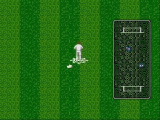 Screenshot Thumbnail / Media File 1 for Brian Lara Cricket (Europe) (March 1995)