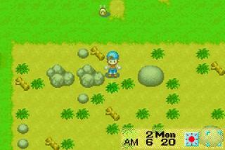 Screenshot Thumbnail / Media File 1 for Harvest Moon - Friends of Mineral Town (E)(GBA)