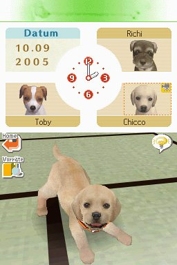Nintendogs Best Dog For Agility
