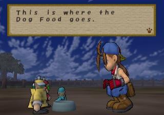 Screenshot Thumbnail / Media File 1 for Harvest Moon - Save the Homeland (USA)