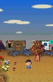 Animal Crossing - Wild World (U)(SCZ) ROM