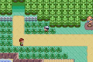Screenshot Thumbnail / Media File 1 for Pokemon - HeartGold Version (U)